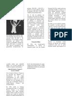 Brochure de Rafael Leonidas Trujillo-Rosa Reyes
