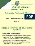 Tema 11 - Cinética