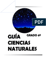 42827924.Guía grado 6.pdf
