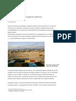 Knierbein(sin fecha)Playas urbanas como espacios publicos- El caso Rio de Janeiro.pdf