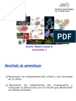 clase citosol y citoesqueleto (1).pdf