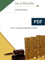 Las Garantias Individuales en México
