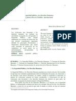 Seguridad Publica y DDHH en Ambito Int.