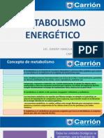 3_METABOLISMO_ENERGETICO__1670__0__1744__0__2032__0 (1).pdf