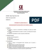 Informe Parasitología Giardia Lamblia Parasitología