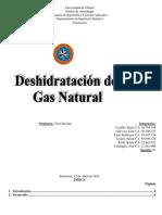 6Deshidratacion de Gas