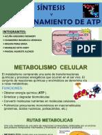 METABOLISMO DIAPOS TERMINADAS