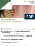 02. Tecnologia Biocobre Lixiviacion de Concentrados