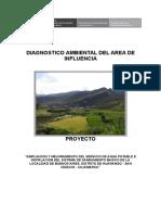 15. Diagnostico Ambiental-Buenos Aires_ok