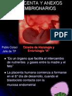Teorico de Placenta. Dr. Pablo Colaci