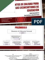 Lineamientos de Calidad Para Las Licenciaturas de Educación (1)