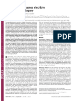 Ross et al 2004 stepsirhines phylogenies.full.pdf
