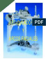 articulador11.pdf
