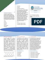 Tríptico de Materiales Polímeros y Compuestos (Tecnología de Los Materiales)