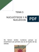 Tema5 Loscidosnucleicos 101125114946 Phpapp02