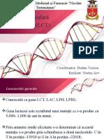 Lactase.pptx