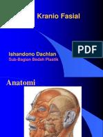 trauma craniofacial
