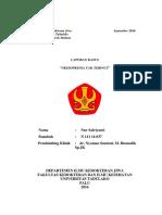 Laporan Kasus Skizofrena Tak Terinci.docx