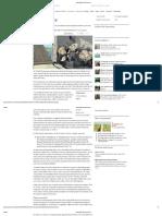 Drawbridges Up _ the Economist