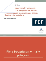 02. Flora. Patogenia-ATB-RB-2016.pptx