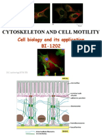 Cytoskeleton and Cell Motility 1