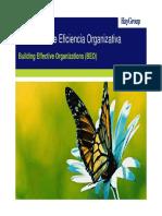 Folleto Presentacion Organizacion (Beo)