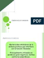 Aminoglucosidos