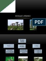 Bosque Urbano P