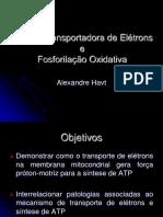 Cadeia Transportadora de Elétrons e Fosforilação Oxidativaaa