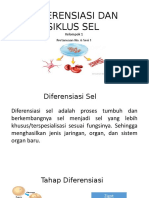 Diferensiasi Dan Siklus Sel by Mutia