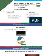 BIOLOGIA LILI Metastasis y Lisosomas