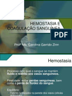 Hemostasia e Coagulacao Sanguinea Apostilas Bio Medicina Parte1