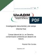 Rolando Félix Informe.doc