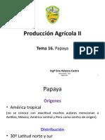 Clase 16. Papaya.pptx