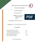 Protocolo de proyecto ventilador controlado por bluetooth