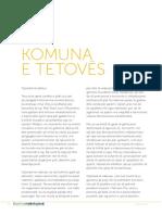 Teuta Arifi - Programi Per Zgjedhjet Lokale 2013