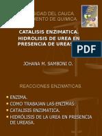 Catálisis enzimática