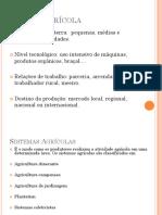 Tipos de Agricultura e Técnicas Agrícolas.ppt