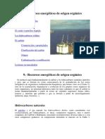 EL PETROLEO.docx