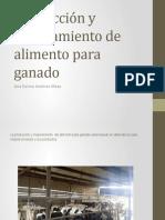 S8_Ana_Jimenez_presentacioninforme.ppt.pptx