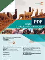 2016 Sanidad Animal en Camélidos Domesticos_SP & Heiffer