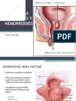 hemorroidesyotraspatologiasorificiales-130828233720-phpapp01