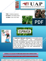 espinaca - Bromatologia