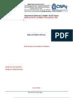 Modelo Relatrio Final PIBIC