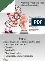 nasal 1.2.pptx