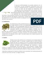 10 plantas medicinales