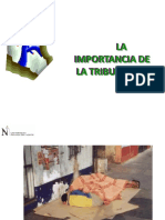 2010 IMPORTANCIA.ppt