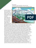 ciclo biogeoquimicos.docx