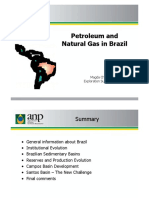 14 Petroleum and Natural Gas in Brazil