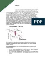 15 Examen Del Tórax y Pulmones